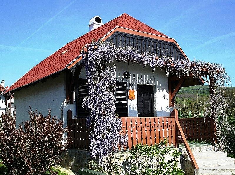 http://www.schoener-reisen.at/Bildergalerie/data/media/654/velem_milieniumpark_huser_14.jpg