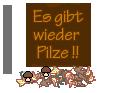 :Sgherbst14_8: